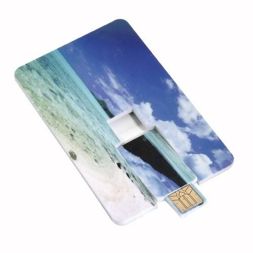 Digitally Printed Memory Stick Wallet Cards