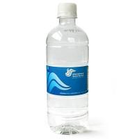 Custom Bottled Water 600ml