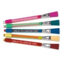 Stick Eraser with Brush