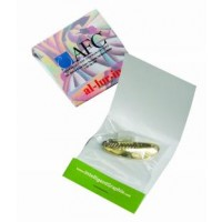 Matchbook with Mini Spoon Fishing Lure