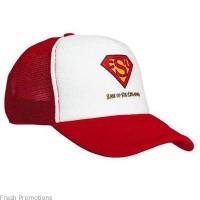 Classic Truckers Caps